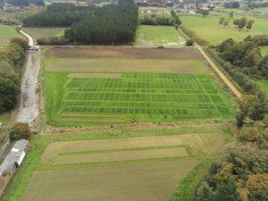 Vista aérea ensayos praderas Lugo 2018